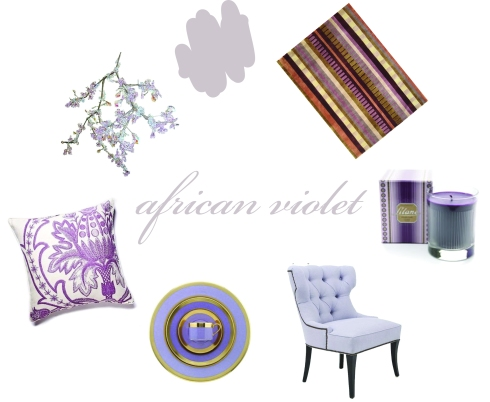 Color Friday Is African Violet Paint It What I Tell You